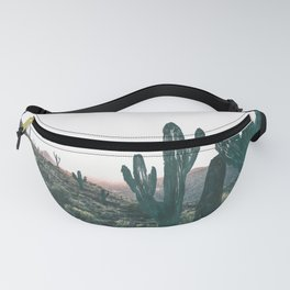 Day Six Fanny Pack