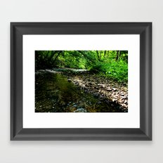 Elvish River Framed Art Print