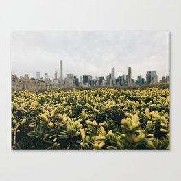 The Met Rooftop Canvas Print