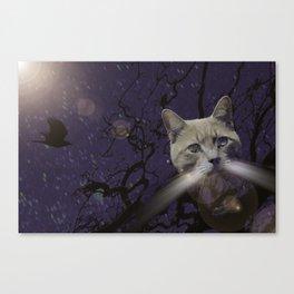 Skat Cat Canvas Print