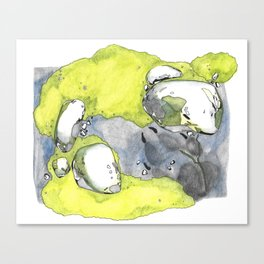 Moss Study with Wolf Print Canvas Print
