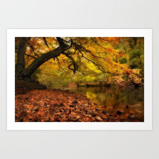Nidd Gorge in Autumn Art Print
