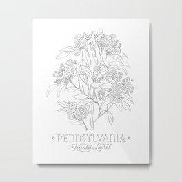 Pennsylvania Sketch Metal Print