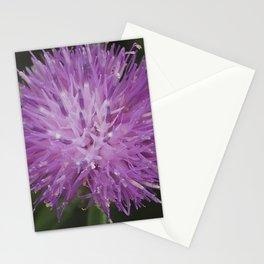 Knapweed Stationery Cards