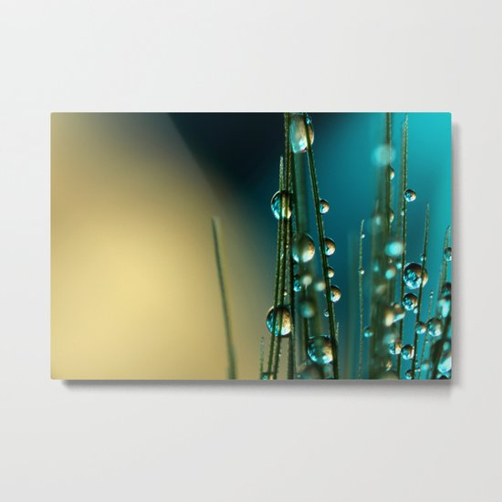 Grass Seed with Blue Metal Print