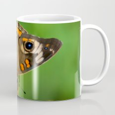 COMMON BUCKEYE BUTTERFLY IN THE FALL (Close-Up) Coffee Mug