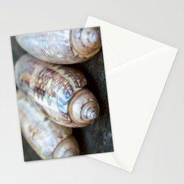 Three Olive Shells Stationery Cards