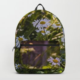 Continuous Matters Backpack