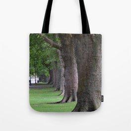 Cambridge tree 1 Tote Bag