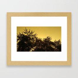 Yellow Sky Evening Framed Art Print
