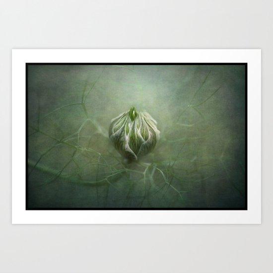 Tangled in a sea of green... Art Print