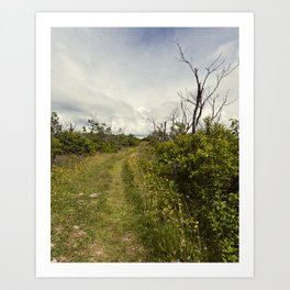 a path in the highlands Art Print
