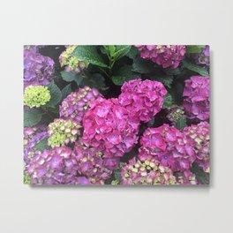 Pink Raindrops 2 Metal Print