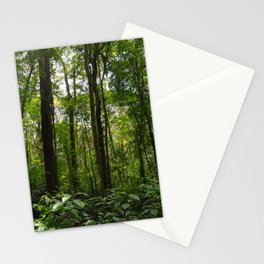 Immersed in Nature Stationery Cards