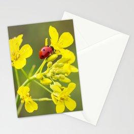 Ladybug on Yellow Stationery Cards