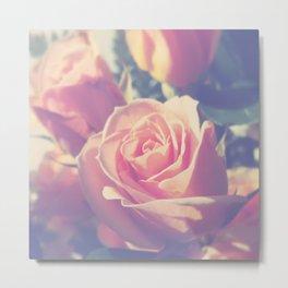 Shy Rose Metal Print