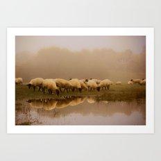 Foggy Sheep Art Print