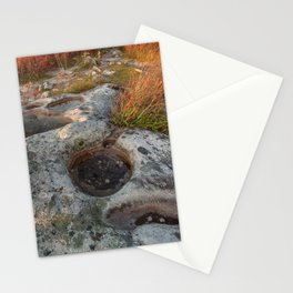 Autumn Huckleberry Fossil Stationery Cards