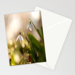 You And I Two Snowdrop Flowers #decor #society6 Stationery Cards