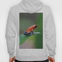 Blue Jeans Frog Costa Rica Hoody