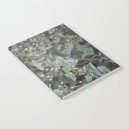 Bee Work Notebook