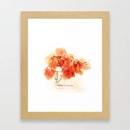 Sunny Bougainville(5). Framed Art Print
