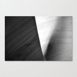Wood Veneer _ Black & White Canvas Print