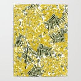Yellow Mimosa Poster
