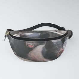 Piglet Party Fanny Pack