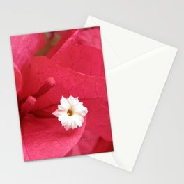 TEXTURES - Bougainvillea Stationery Cards