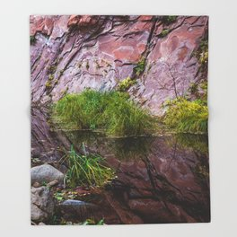 Moss on Red Rocks 2 Throw Blanket