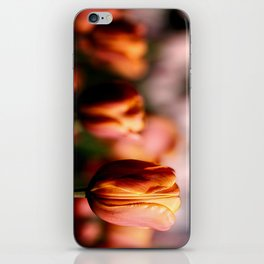 Colorful spring tulips iPhone Skin