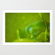 Verte Art Print