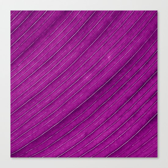 purple banana leaf Canvas Print