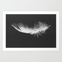 Feather floating Art Print