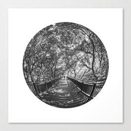 Circular Fisheye #6 Canvas Print