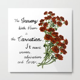 Carnation - Birth Month Flower for January Metal Print
