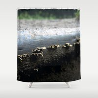 mushrooms Shower Curtains featuring mushrooms by nast