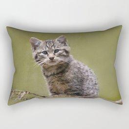 Scottish Wildcat Kitten Rectangular Pillow
