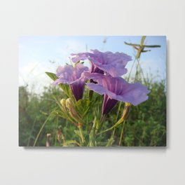 Happy times image word and purple flower on gift product Metal Print