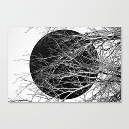 Dark sphere, abstract photo art of tree branches Canvas Print