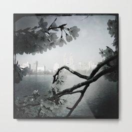San Remo Behind Cherry Blossoms Metal Print