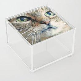 My Sweet Lilly the Cat Acrylic Box