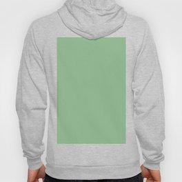 color dark sea green Hoody