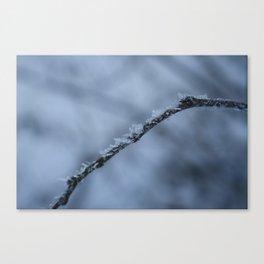 Icebender Canvas Print