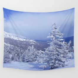 Winter day 27 Wall Tapestry
