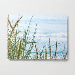 Marram Grass Metal Print