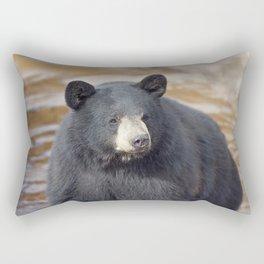 Black Bear (Ursus americans) in water Rectangular Pillow