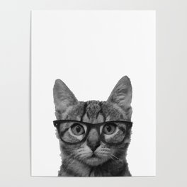 Brainy Cat Poster