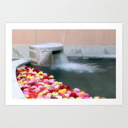 Japanese Hot Spring With Roses Art Print